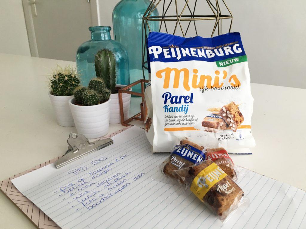 peijnenburg mini's