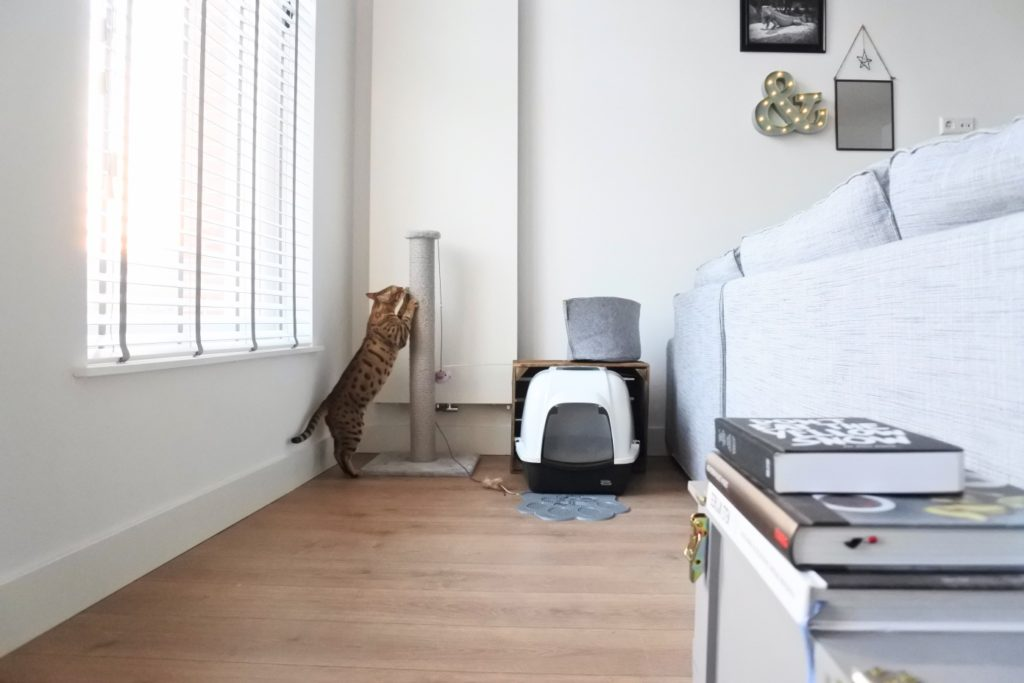 kattenhoek